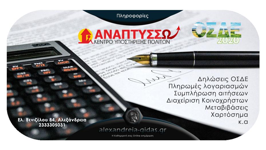 Ιδιωτικό ΚΕΠ «Αναπτύσσω» στην Αλεξάνδρεια – ολοκληρώστε εύκολα και γρήγορα διαδικασίες που σας φαίνονται βουνό!