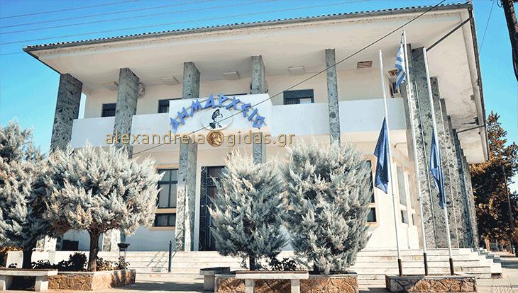 Έκκληση του δήμου Αλεξάνδρειας για βοήθεια στο Κοινωνικό Παντοπωλείο, Φαρμακείο και Κέντρο Κοινότητας