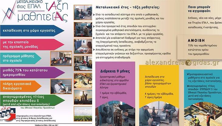 Πρόγραμμα απασχόλησης μαθητών του ΕΠΑΛ για επιχειρήσεις της Αλεξάνδρειας