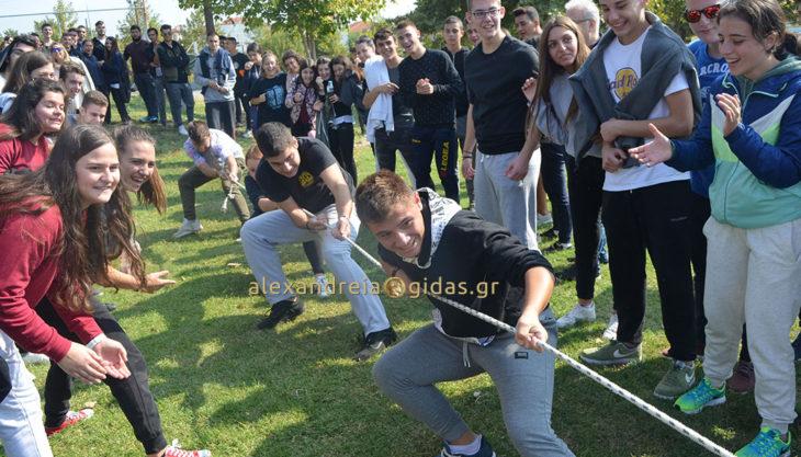 Γιόρτασε την Ημέρα Σχολικού Αθλητισμού το 1ο Λύκειο Αλεξάνδρειας (φώτο)