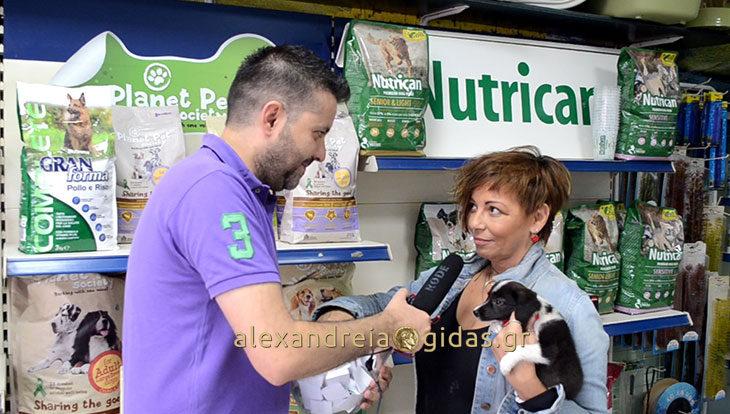 Ποιος κέρδισε το δώρο από το PET SHOP της ΕΛΕΝΑΣ στην κλήρωση του Αλεξάνδρεια-Γιδάς!! (βίντεο)