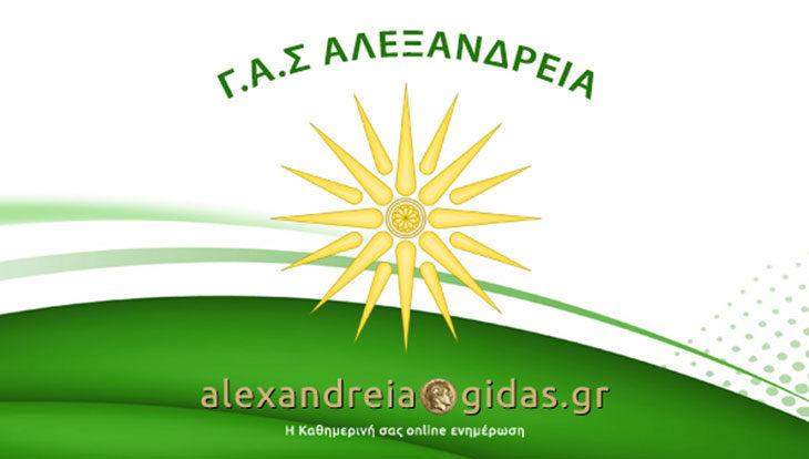 Με το Αιγίνιο αύριο στην Αλεξάνδρεια ο ΓΑΣ (κάλεσμα)