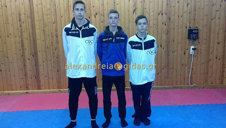 Αναχώρησαν για την Σερβία οι αθλητές Tae Kwon Do του ΦΙΛΙΠΠΟΥ Αλεξάνδρειας (φώτο)