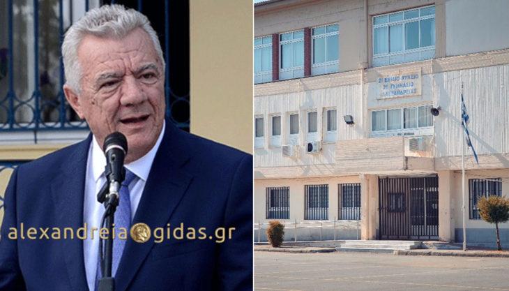 Έκτακτο: Οριστικό, κλειστά τα σχολεία του δήμου Αλεξάνδρειας με απόφαση του Παναγιώτη Γκυρίνη