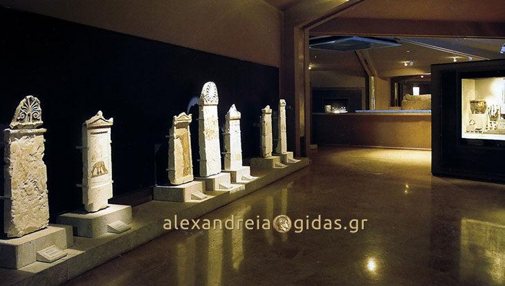 Εκδρομή στο Μουσείο της Βεργίνας διοργανώνει το ΚΑΠΗ Αλεξάνδρειας