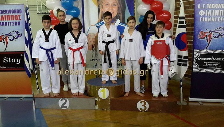 Σημαντικές εμπειρίες για τους νεαρούς αθλητές του ΦΙΛΙΠΠΟΥ Αλεξάνδρειας στο TAE KWON DO (φώτο-βίντεο)