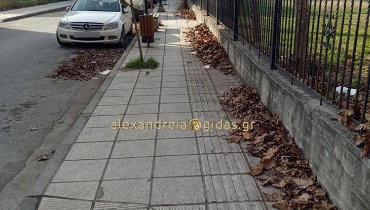Αναγνώστης για την καθαριότητα στην Αλεξάνδρεια: Γιατί πληρώνουμε φόρους; (φώτο)