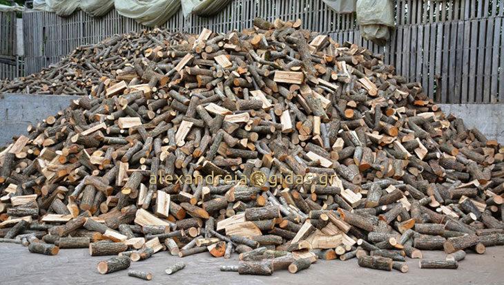 Καυσόξυλα Ελαφίνας στην Ημαθία: Η κορυφαία ποιότητα στην καλύτερη τιμή! (φώτο)