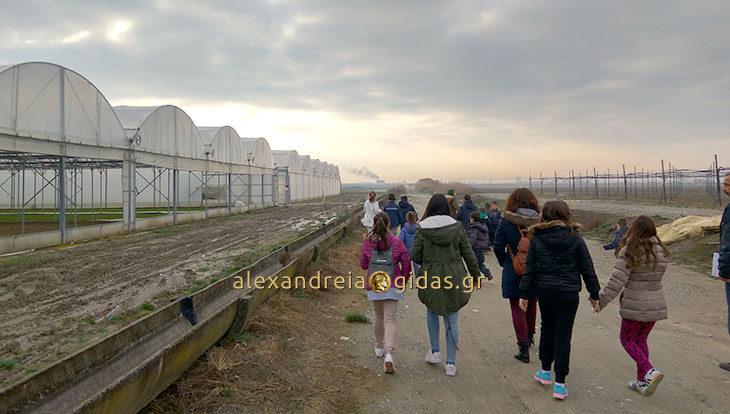 Το περιβόλι ΒΕΖΥΡΟΓΛΟΥ επισκέφτηκε το Δημοτικό Σχολείο Νεοχωρίου – Σχοινά (φώτο)