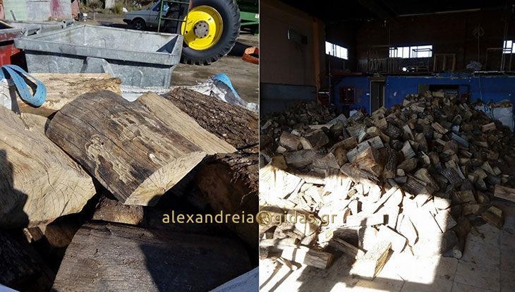 Αγοράστε ξερά καυσόξυλα στην Αλεξάνδρεια τα οποία μπορείτε να τα κάψετε φέτος! (φώτο)
