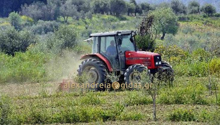 ΕΥΚΑΙΡΙΑ: Πωλούνται 2 αγροτεμάχια στον δήμο Αλεξάνδρειας (πληροφορίες)