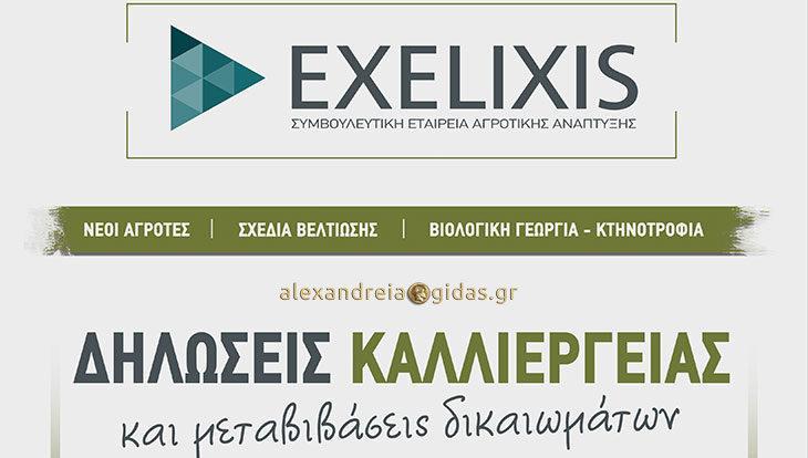 EXELIXIS: Το νέο πιστοποιημένο Κέντρο Υποδοχής Δηλώσεων ΟΣΔΕ στην Αλεξάνδρεια