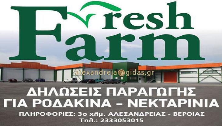 Δηλώσεις παραγωγής για Νεκταρίνια – Ροδάκινα στη FreshFarm στην Αλεξάνδρεια