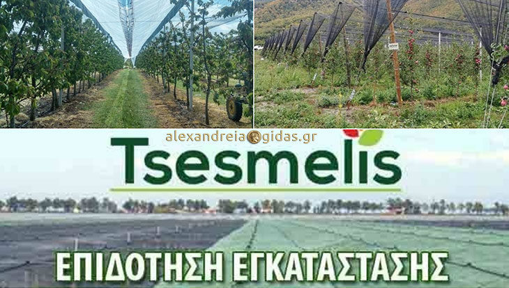 TSESMELIS: Βρείτε στην Ημαθία αξιόπιστη λύση στις επιδοτήσεις αντιχαλαζικών συστημάτων!