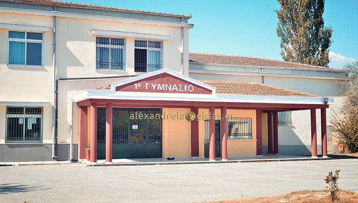 Μέχρι 29 Ιουνίου οι εγγραφές σε όλες τις τάξεις του 1ου Γυμνασίου Αλεξάνδρειας (ανακοίνωση)