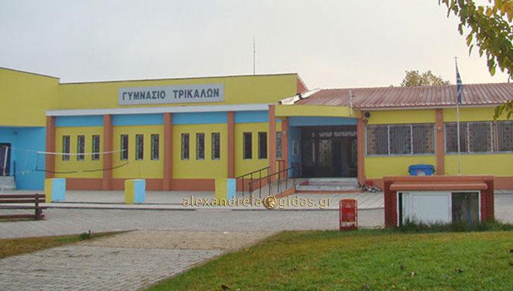 Οι μαθητές που διακρίθηκαν στο Γυμνάσιο Τρικάλων του δήμου Αλεξάνδρειας (ονόματα-αριστεία)
