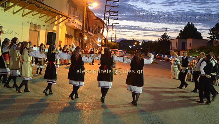 Βραδιά με πολιτιστικούς χορούς στο Παλαιοχώρι του δήμου Αλεξάνδρειας (φώτο-βίντεο)