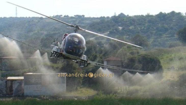 Με 3 ελικόπτερα τη Δευτέρα θα γίνουν οι ψεκασμοί για τα κουνούπια και στον δήμο Αλεξάνδρειας (πρόγραμμα)