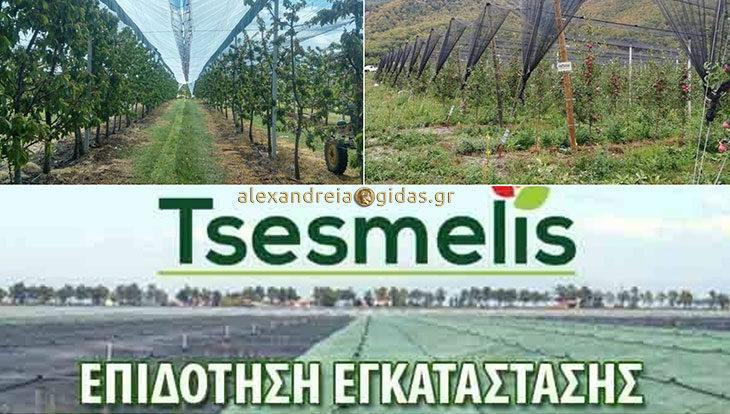 Αντιχαλαζικά συστήματα TSESMELIS με εμπειρία και αξιοπιστία στην Ημαθία (φώτο)