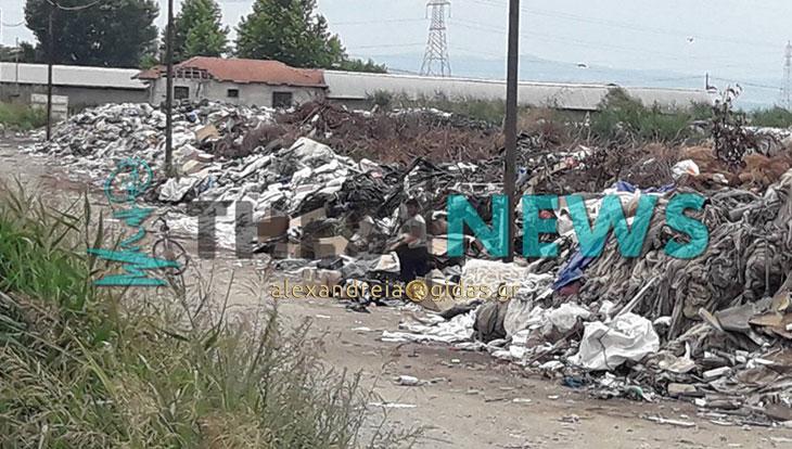 Χωματερή δίπλα σε καλλιέργειες στην Αλεξάνδρεια που αποτελεί υγειονομική βόμβα (φώτο)