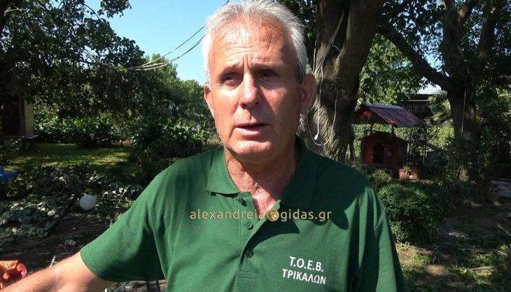 Ζημιές και καταστροφές στο σπίτι του δημοτικού συμβούλου Μόσχου Κυτούδη στα Τρίκαλα (βίντεο)
