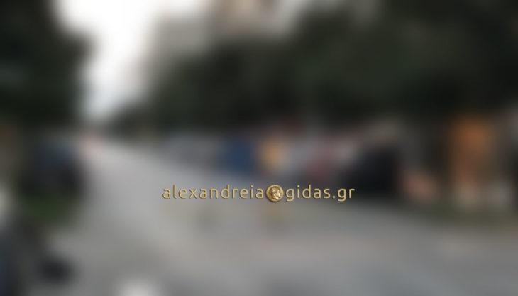 Αναγνώστης: Αυτή είναι η φωτογραφία της ημέρας στην Αλεξάνδρεια! (εικόνα)