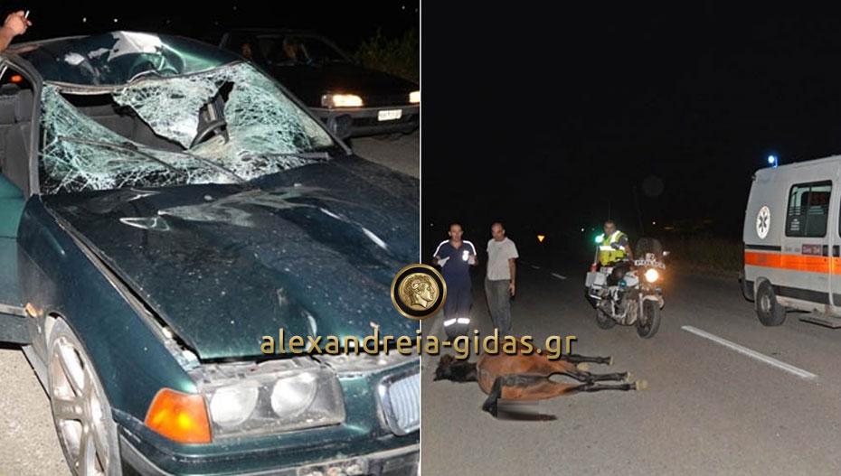 Τροχαίο ΣΟΚ στο Αιγίνιο – αυτοκίνητο συγκρούστηκε με άλογο (ακατάλληλες εικόνες)