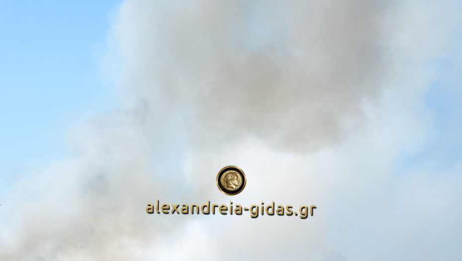 Έντονη η μυρωδιά καμένου και καπνοί χτες το βράδυ σε όλη την Αλεξάνδρεια – τι έγινε