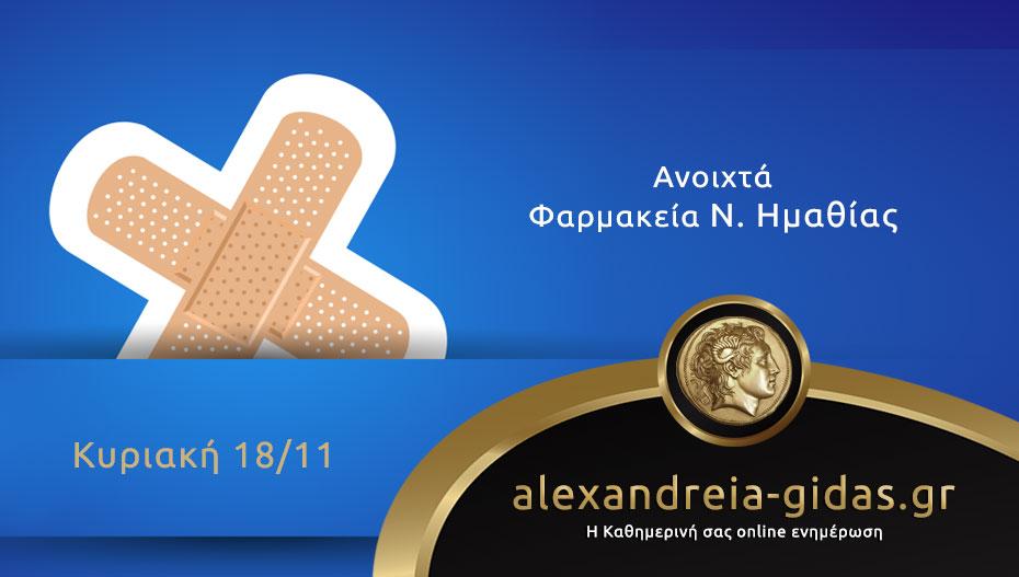 Ανοιχτά φαρμακεία Ημαθίας Κυριακή 18 Νοεμβρίου