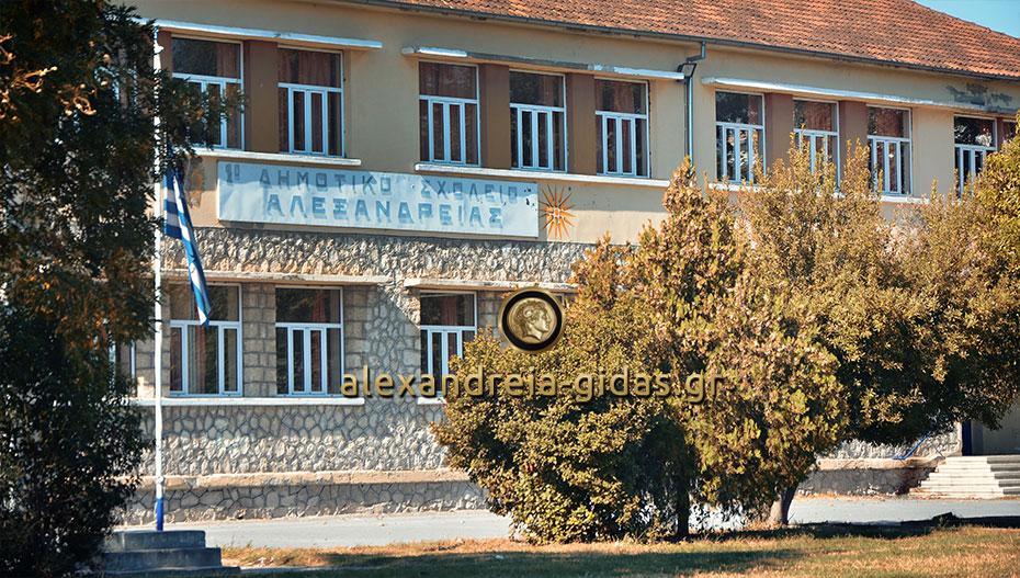 Επιστολή γονέων στον Παναγιώτη Γκυρίνη για φύλαξη των αύλειων χώρων των σχολείων της Αλεξάνδρειας