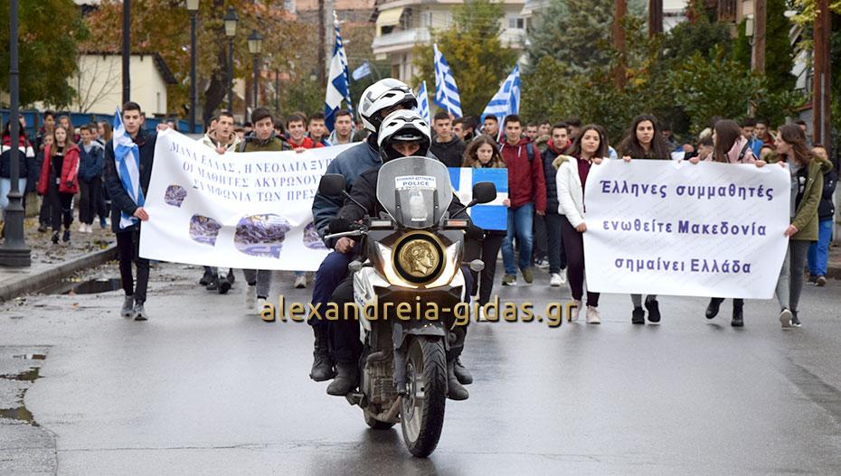 Πορεία των μαθητών της Αλεξάνδρειας για την Μακεδονία (φώτο-βίντεο)