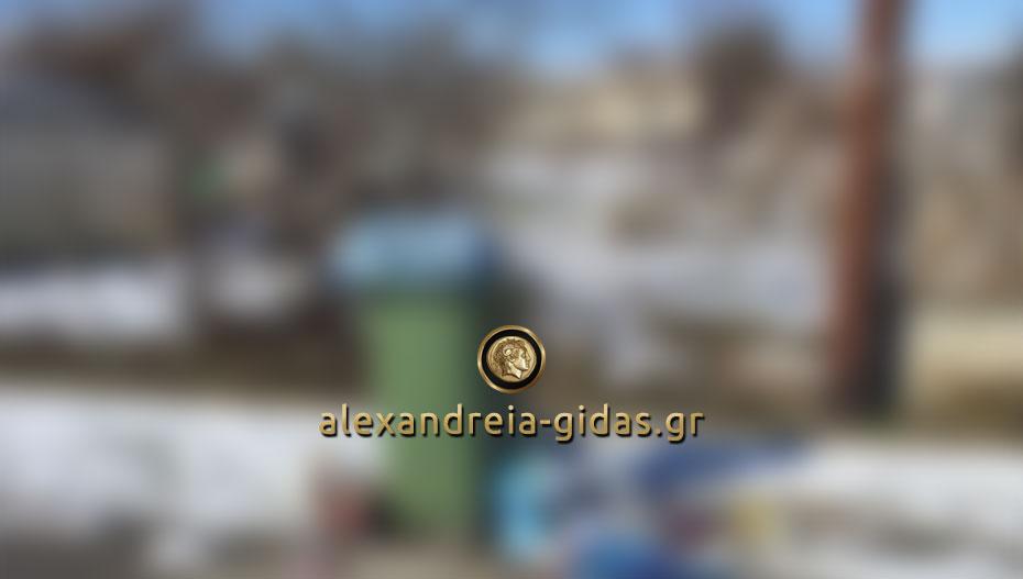 Αναγνώστης: Η εικόνα από το Νησί του δήμου Αλεξάνδρειας (φώτο)
