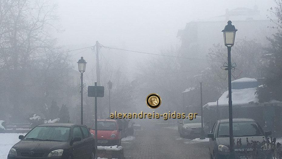 Μετά το χιόνι, με ομίχλη «ξύπνησε» η Αλεξάνδρεια (φώτο)