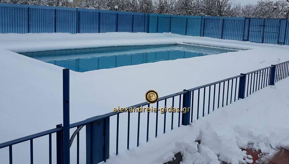 Έκτακτο: Δεν θα γίνει η ρίψη του Τιμίου Σταυρού αύριο στο κολυμβητήριο Αλεξάνδρειας