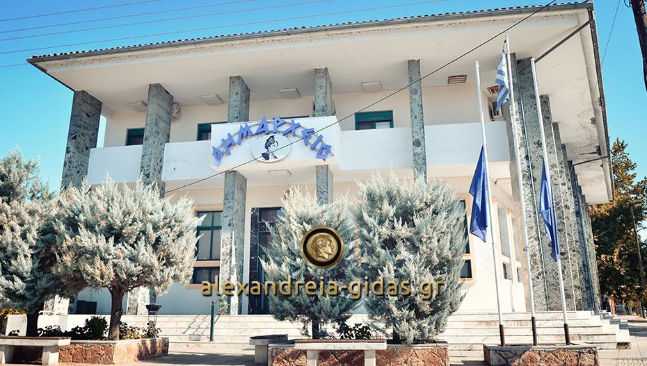 Στο δημαρχείο τα πορίσματα του ΕΛΓΑ για το χαλάζι του Μαρτίου σε χωριά του δήμου Αλεξάνδρειας