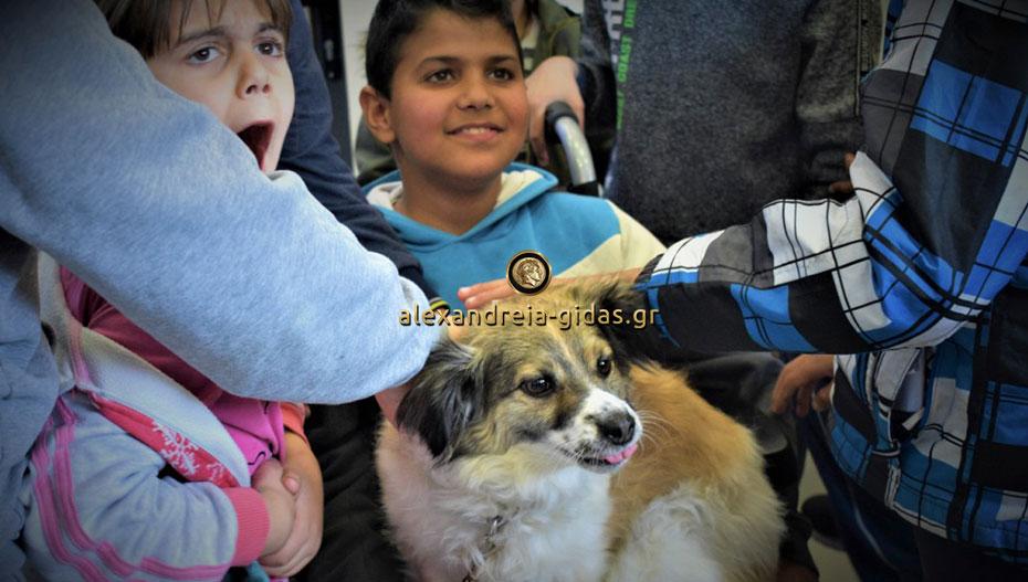 Ένας σκύλος θεραπευτής στο Ειδικό Σχολείο Αλεξάνδρειας (εικόνες)
