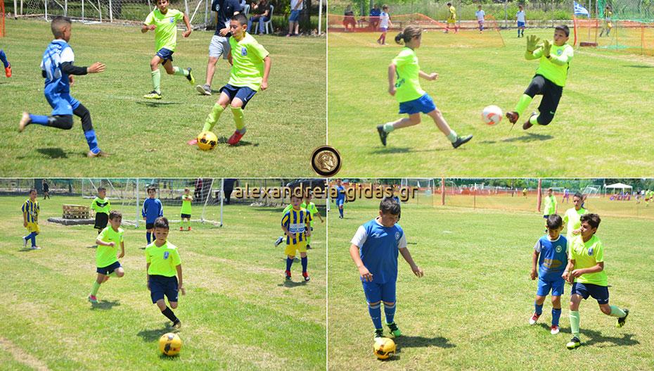 Το τουρνουά του ΑΣΤΕΡΑ Αλεξάνδρειας συγκέντρωσε και φέτος το μέλλον του ποδοσφαίρου στο γήπεδο Νησίου (εικόνες)