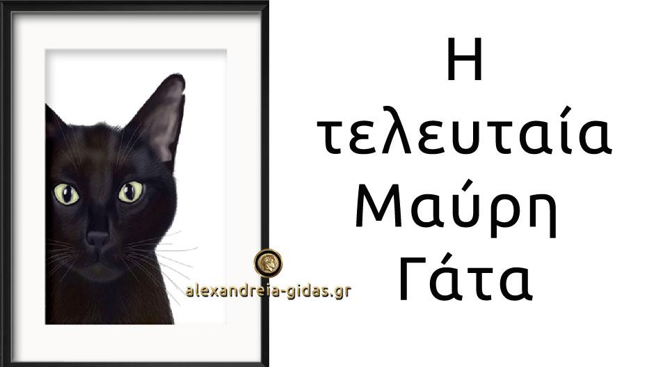 Απόψε η «Τελευταία μαύρη γάτα» του Δημοτικού Σχολείου Κορυφής στο Πλατύ! (πρόσκληση)