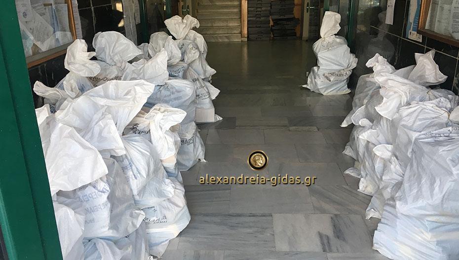 Γέμισε με λευκούς σάκους των εκλογών το δημαρχείο Αλεξάνδρειας (εικόνες)