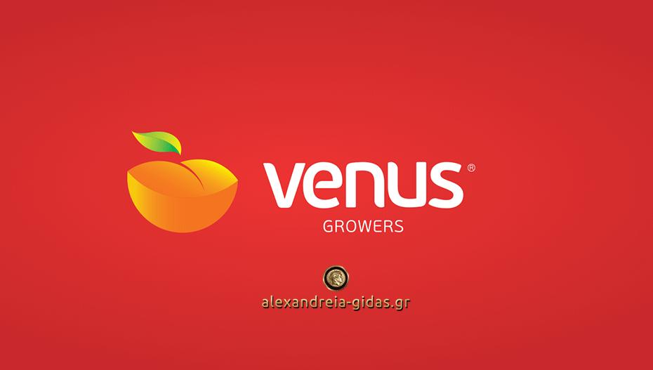 Προσλήψεις στα εργοστάσια της VENUS σε Αλεξάνδρεια και Βέροια (πληροφορίες)