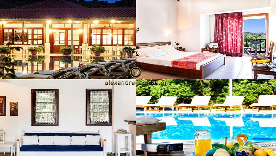 Διακοπές στη Σκιάθο; Προτιμήστε το Hotel Stellina που έχει σχέση με την Αλεξάνδρεια! (εικόνες)