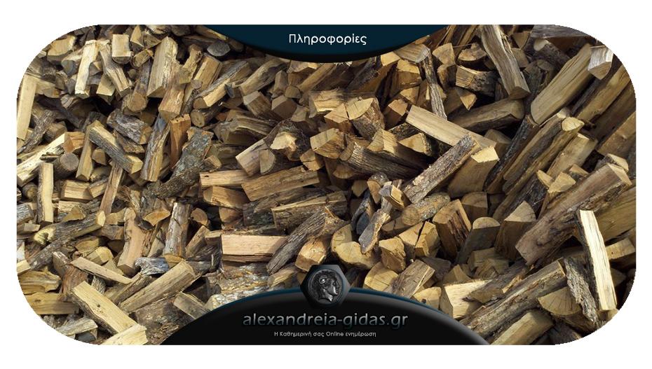 Μην περιμένετε τον χειμώνα: Προμηθευτείτε από τώρα ξύλα για σόμπα και τζάκι από τα «Καυσόξυλα ΕΛΑΦΙΝΑΣ»!