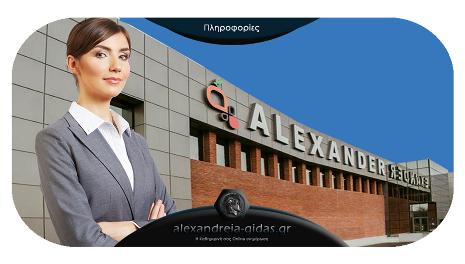 Θέση πωλητή στην εταιρία ALEXANDER στην Ημαθία