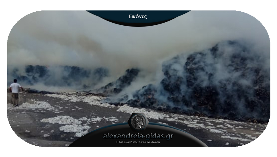 ΤΩΡΑ: Μεγάλη φωτιά σε χώρο συγκέντρωσης βάμβακος στα Τρίκαλα Ημαθίας