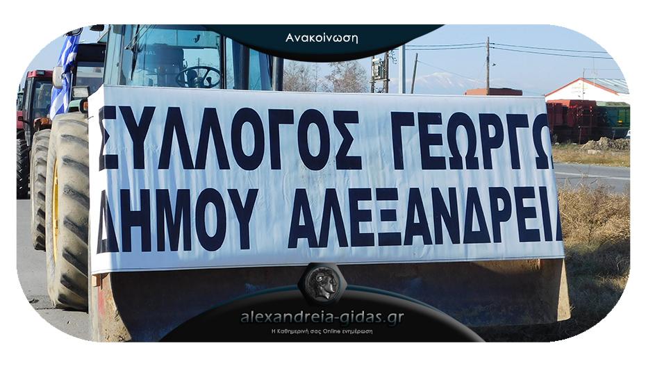 Αγροτικός Σύλλογος Αλεξάνδρειας: «Μίζερη τιμολογιακά η χρονιά για τα προϊόντα της περιοχής»