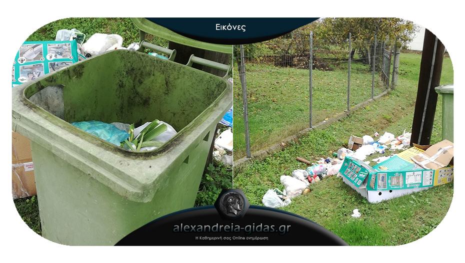 Αναγνώστης: Σχετικά με την καθαριότητα στην Επισκοπή του δήμου Αλεξάνδρειας