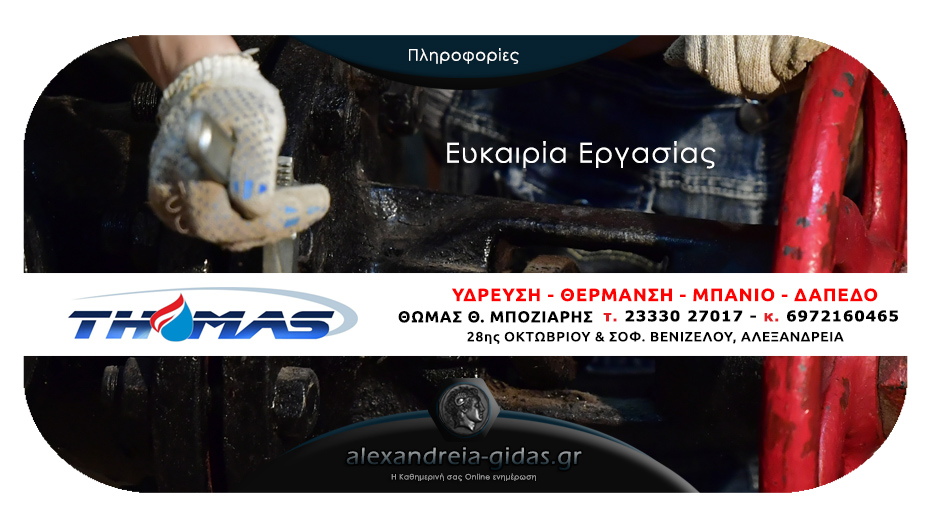 Θέση εργασίας στην εταιρία THOMAS στην Αλεξάνδρεια