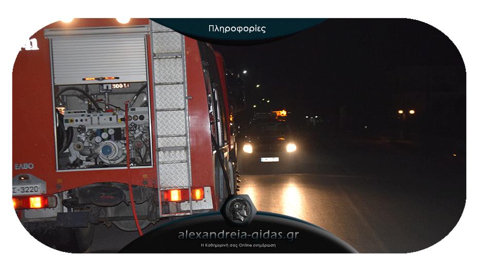 ΤΩΡΑ: Κινητοποίηση των πυροσβεστών της Αλεξάνδρειας
