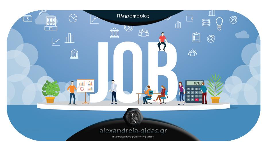 1 θέση εργασίας σε ασφαλιστική επιχείρηση σε Αλεξάνδρεια και Βέροια