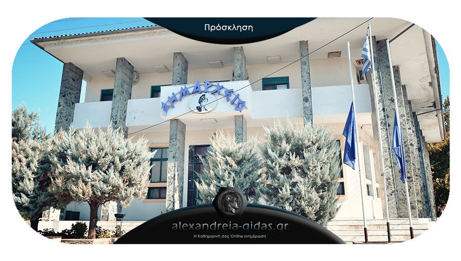 Την Τρίτη συνεδριάζει η Οικονομική Επιτροπή του δήμου Αλεξάνδρειας – ποια τα 6 θέματα που θα συζητηθούν
